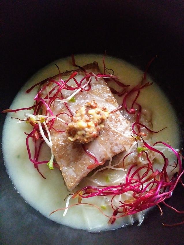 Tonno, salsa di finocchio, germogli, senape antica